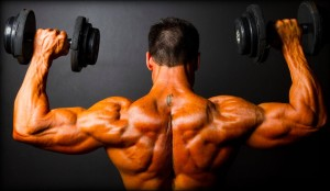 HGH Muscles