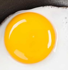 egg yolk cholesterol