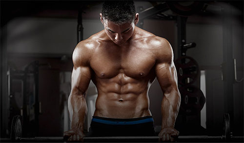 Boss Workouts Lean Mass